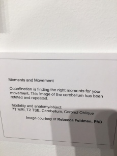 Caption card for Moments and Movement